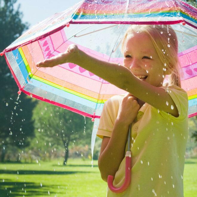 Shutterstock 102299017